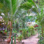 Magic Garden описание с видео на острове Koh Chang – наше первое жилье на 1 ночь.