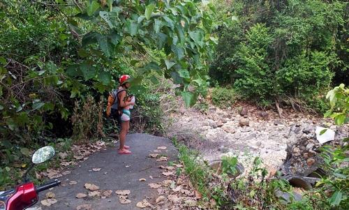 Разрушенный мост в джунглях