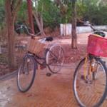 Третий день в Ангкоре. Вновь в Ангкор на велосипеде.
