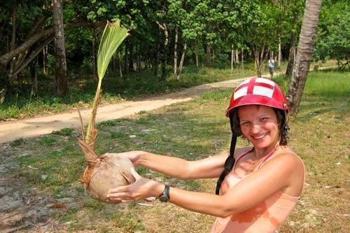 Кокос пророс из ореха