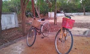 Велосипеды для поездки в Ангкор
