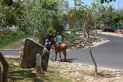 Вьетнам. Вунг Тау. Гора Хо Май. Прогулка на лошади.